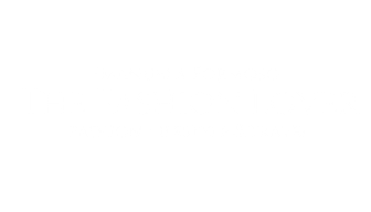 The Fashion Lover New